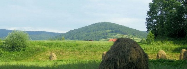 Agritourism, Agritourism Farm