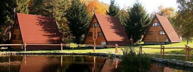 Cabin, Cabins