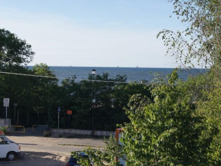widok z budynku