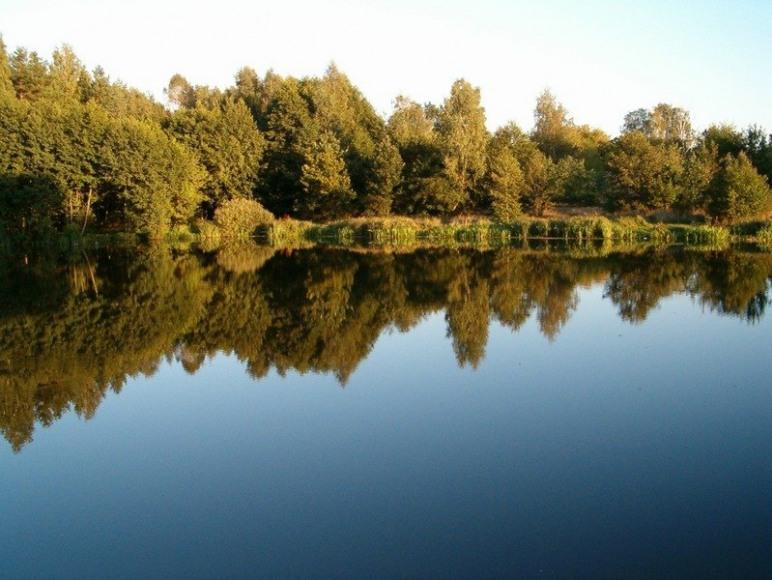 Ośrodek Edukacji Ekologicznej I Integracji Europejskiej Lasów Państwowych