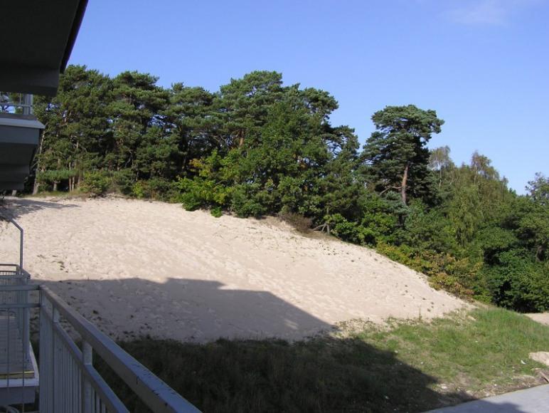 Widok z tarasu na wydmę