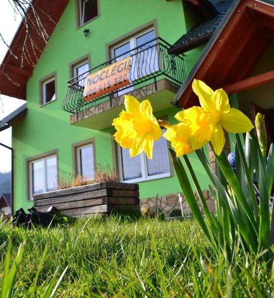 Zielone zacisze apartamenty i pokoje