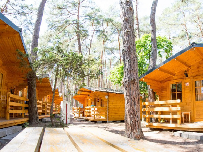 Drewniane domki w lesie