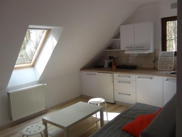 pokój z aneksem kuchennym-mieszkanie