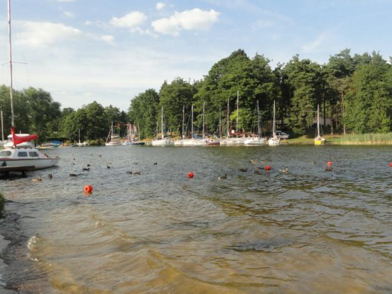 widok na jezioro z plaży