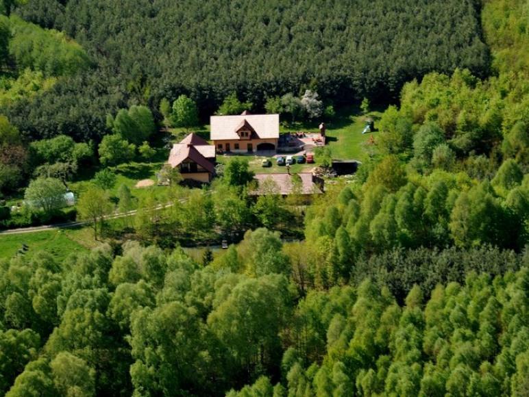 Pensjonat w Lesie