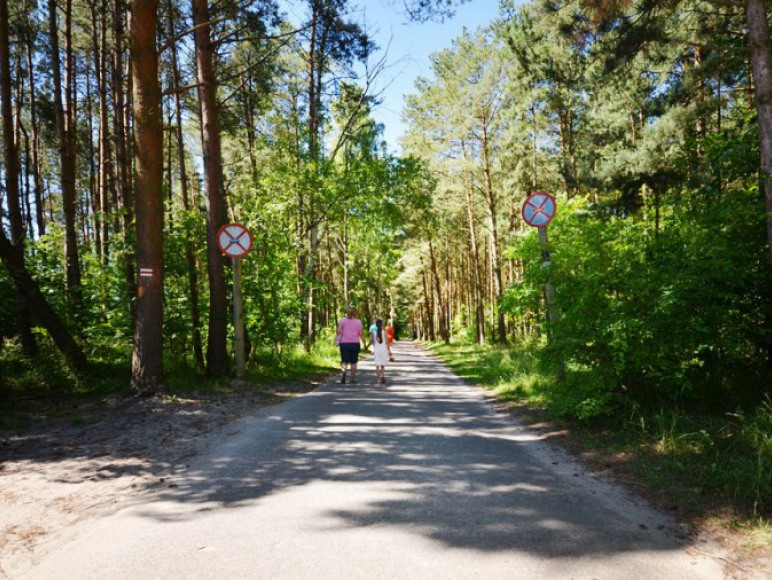 Trasa spacerowo rowerowa 6km