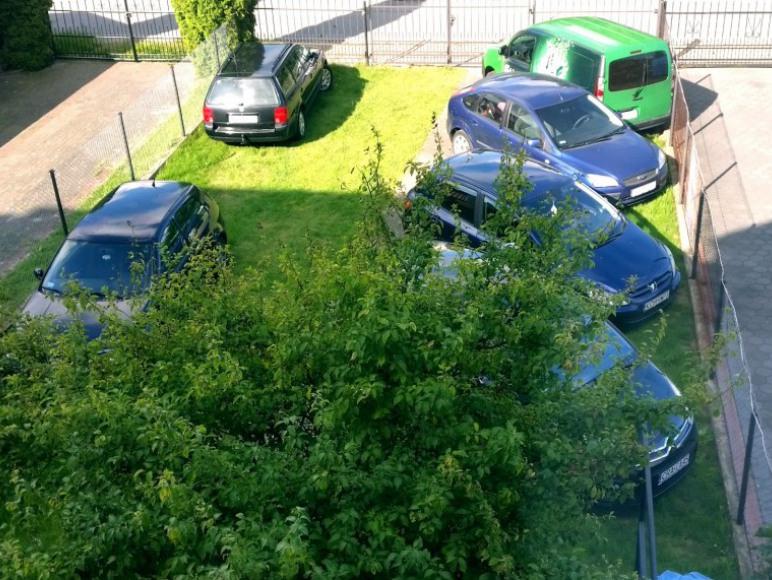 Parking na posesji od strony ogródka