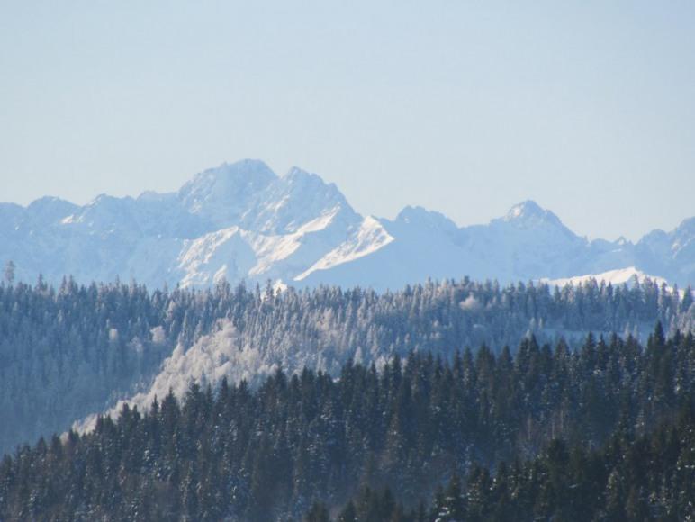 widoki z okna zimą