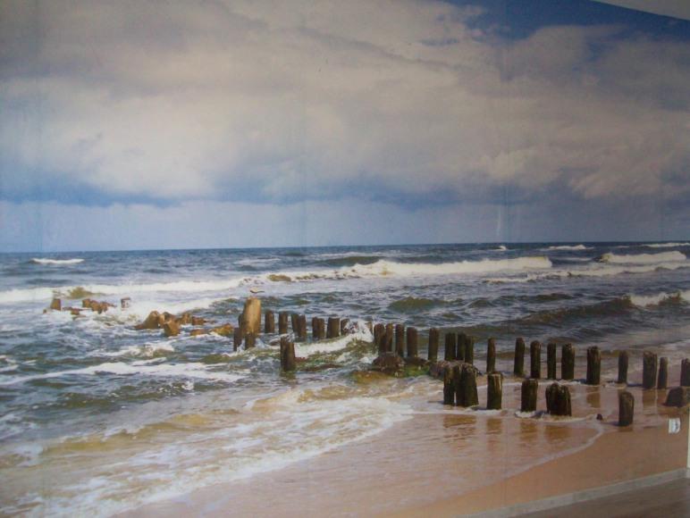 Blisko morza, molo i parku nadmorskiego