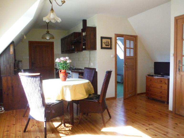 Salon z kominkiem - duży apartament