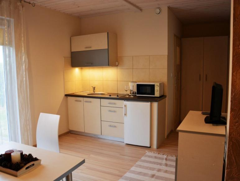 Apartament 2 - kuchnia