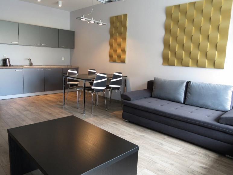 apartament dwupokojowy z aneksem kuchennym