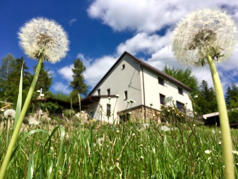 wiosenny widok na dom
