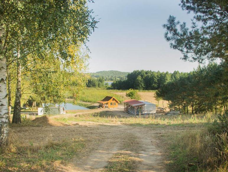 Domek nad drwęcą, stawy rybne, jezioro, grzyby, wę