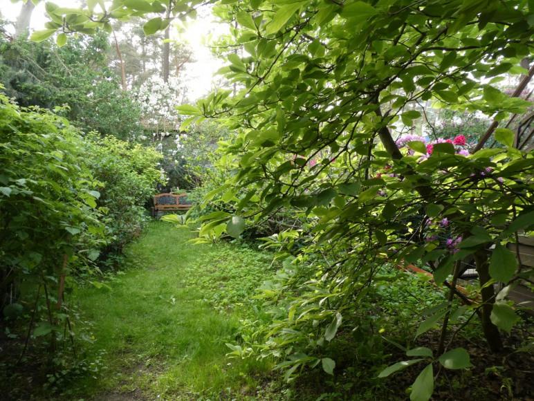 ogródek do dyspozycji
