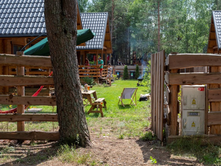 Leśne Runo Borsk