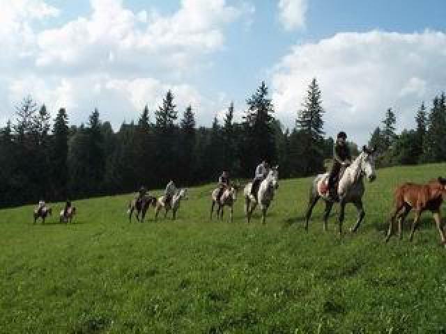 Pokoje Gościnne Górski Ośrodek Jeździecki