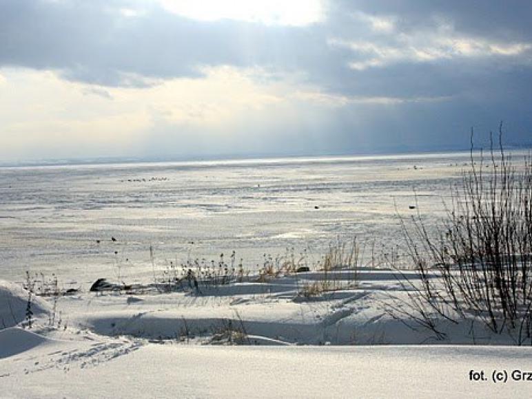 Zatoka zimą ))