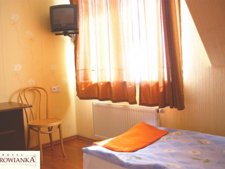 Hotel-Restauracja Borowianka