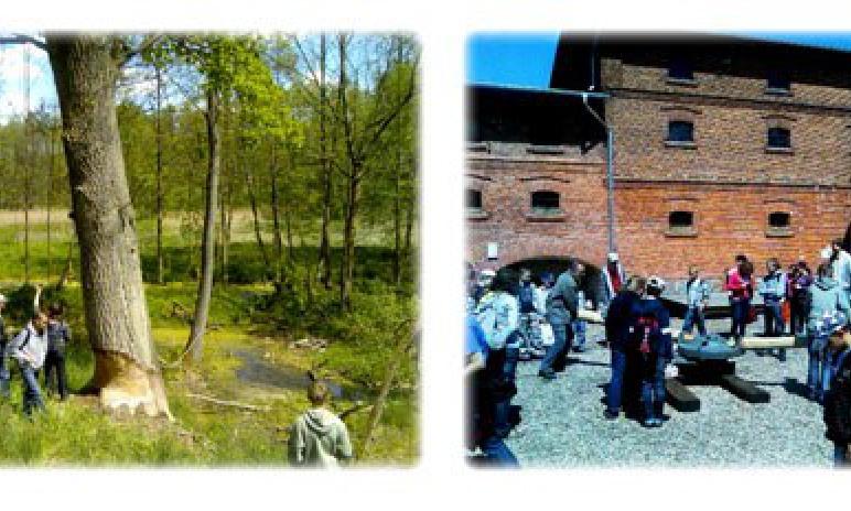 Bobrowy Zakatek i Folwark w Mniszkach