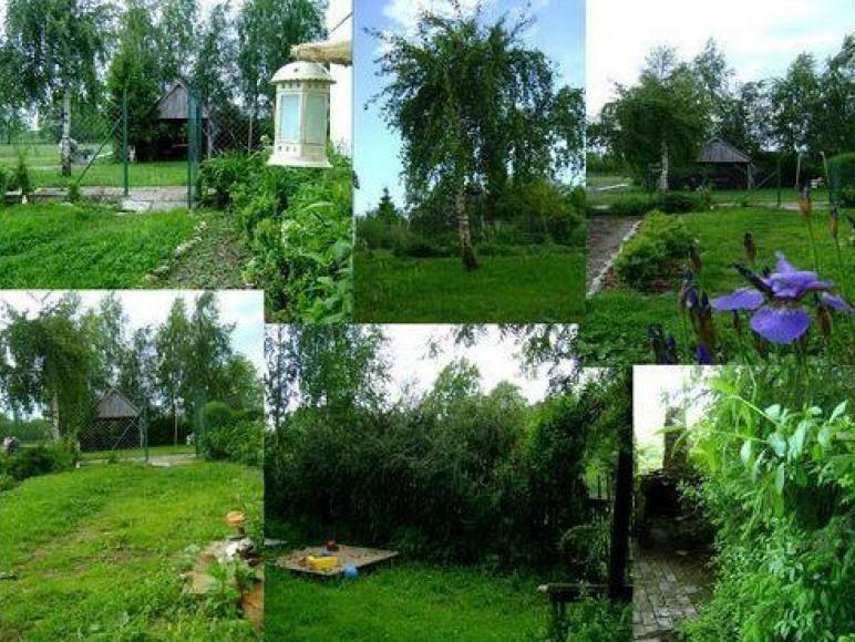 Olzak Maria-Pokoje W Rusinowie