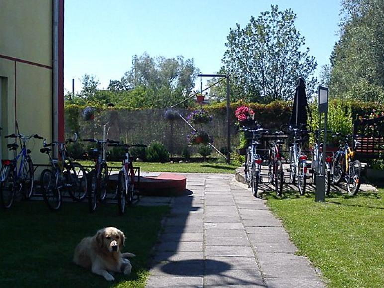Wypożyczalnia rowerów - Reda Mielno.