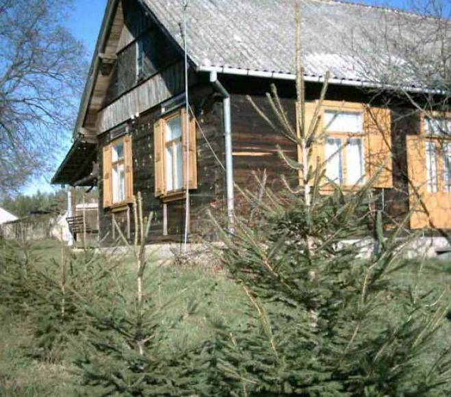Bielińska Góra