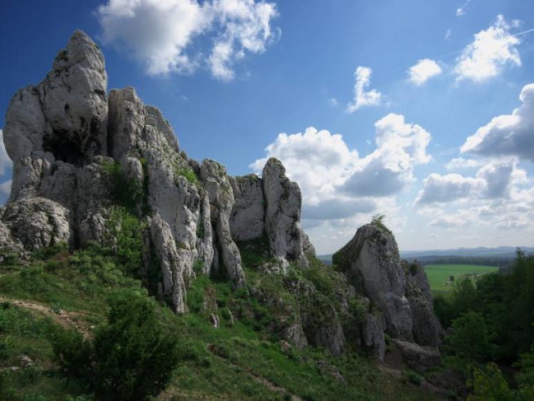 Góra Janowskiego: Podzamcze