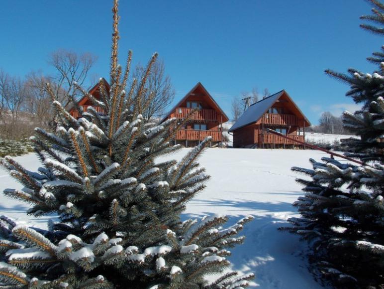 Całoroczne domki z kominkiem - zima