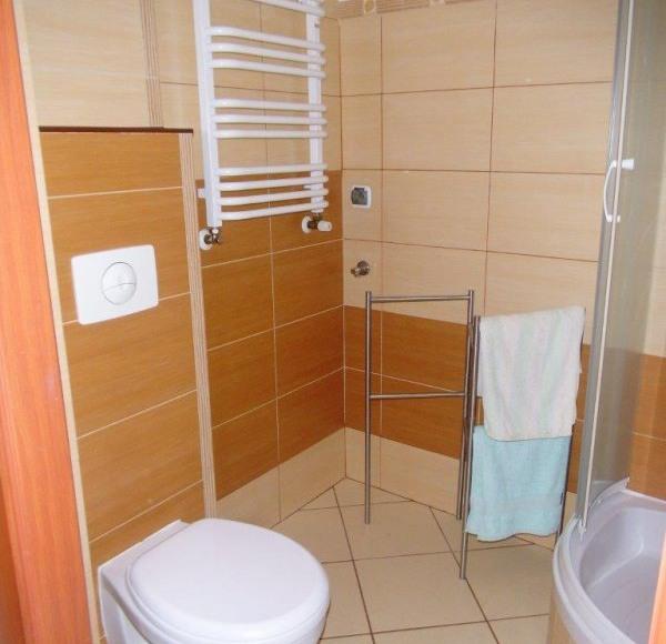 Studio 4 Stronie Śląskie - łazienka z WC i prysznicem