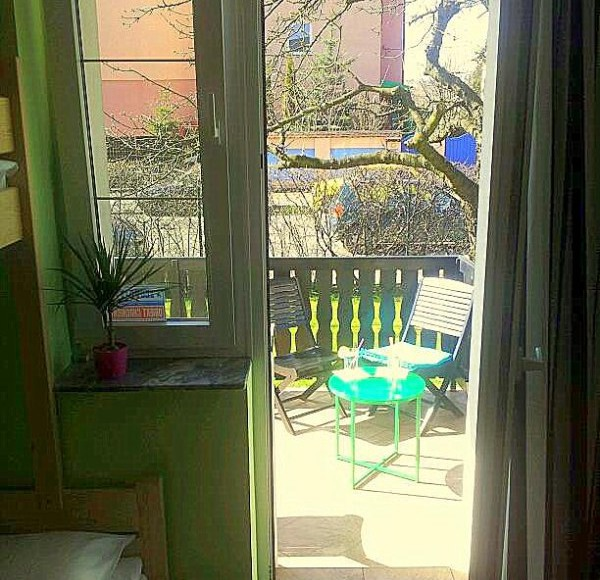 Olive Hostel