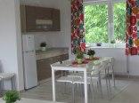 Apartament Brzozowy Las-kuchnia