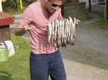 ryby przed wędzeniem
