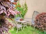 Willa Garden