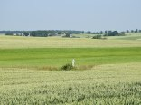 Agroturystyka Wiejska Sielanka