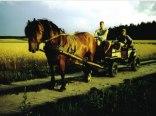 Eko Farm Grabowscy H W