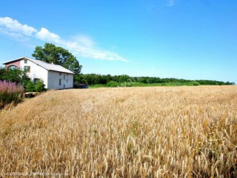 Agroturystyka Agro-Eko - Gosp. wiejskie