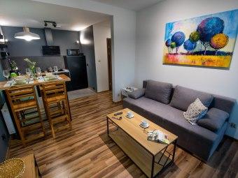 Apartament Kustronia z Garażem