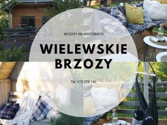 Wielewskie Brzozy