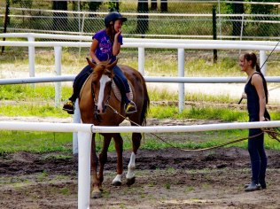 Horse Riding - Kaszubski Bór Ośrodek Wypoczynkowy Stadnina Koni