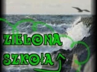 Green School - Ośrodek Wczasowy Camping Morski