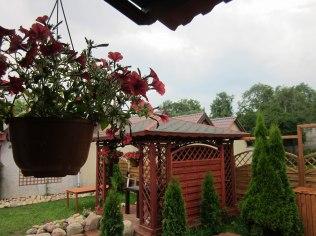 Ogród przed Chatą Rybaka