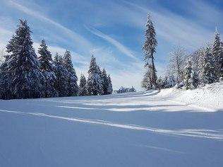 The Winter Holidays - Dom Tu i Teraz