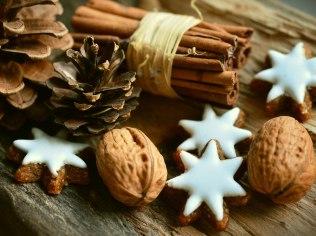 Christmas in the mountains - Idealnie dla rodzin z dziećmi