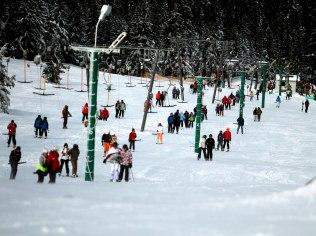 Holidays for families and groups - Ośrodek wypoczynkowy ReVita