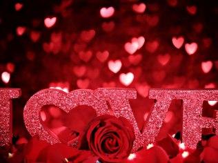 Valentine's Day 2019 + Piano Evening + Valentine's Day - Ośrodek Wypoczynkowy Wrzos